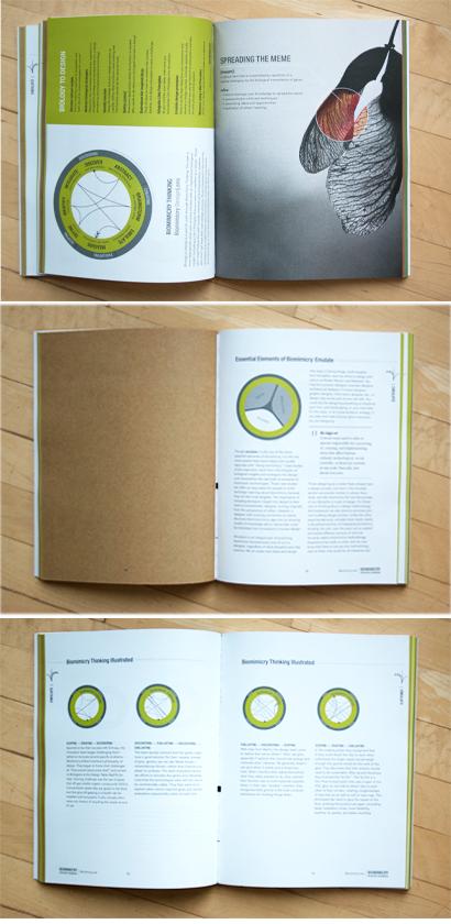 Resource Handbook Biomimicry 38
