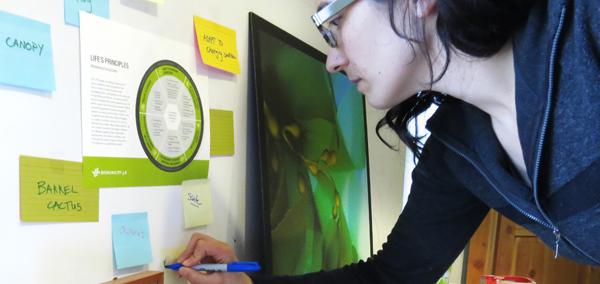 Biomimicry Designlens Biomimicry 38